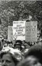 "1970s Feminist Rally Poster - ""Don't Cook Dinner, Starve a Rat"" and ""End Human Sacrifice, Don't Get Married."""