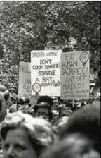 1960s Feminist Rally