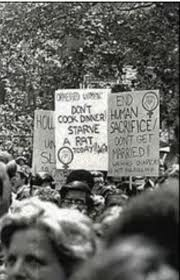 "1970s Feminist Rally Poster - ""Don't Cook Dinner, Starve a Rat"""