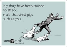 male chauvinist pig