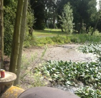 Totally silted-in, former, pond