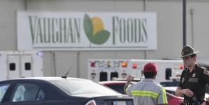 Mark Vaughan 3 Vaughan Foods